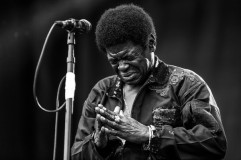 Charles+Bradley+Arroyo+Seco+Weekend+Day+1+DW-7F52BgM-l