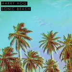Harry Hoo - Sonic Beach