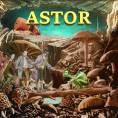Astor - Vacaciones Todo el Año