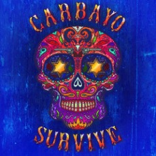 Carbayo - Survive