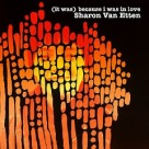 Sharon Van Etten - It Was Because I Was In Love [Deluxe Reissue]