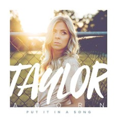 Taylor Acorn - Put It In A Song