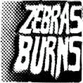 Zebras Burns - Demo