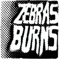 Zebras Burns - Demo