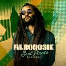 Alborosie - Soul Pirate Acoustic