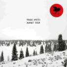 Frode Haltli - Avant Folk