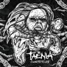 Taenia - Cuartetcore