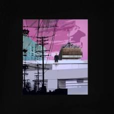 Mutestare - A Violet Wind